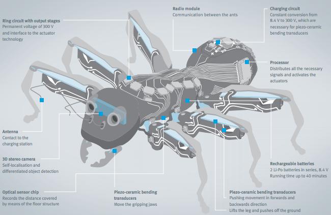 bionic_ants_6