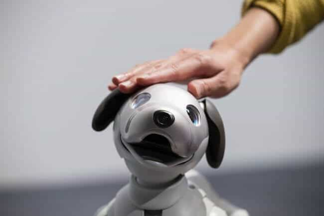 Aibo: Sony presented the robot dog equipped with artificial