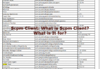 Scpm Client